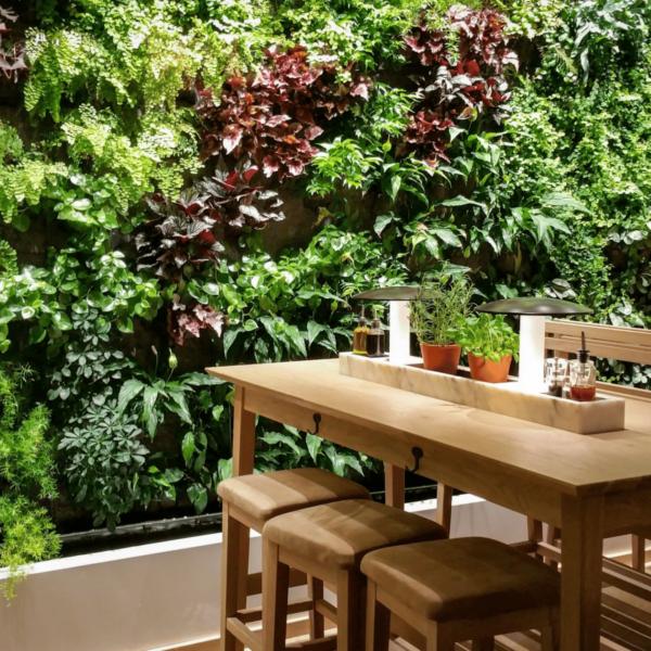 Dine Alfresco with Wonderwall Living Walls