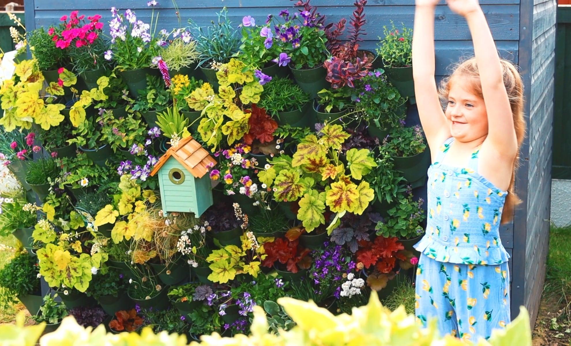 2.3 Wonderwall Kit Emilias Fairy Living Wall Garden Web