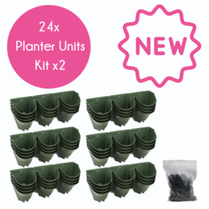 Two boxes of 24 Wonderwall Planter and Water Filter Units