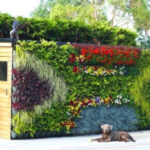 4m2 Outdoor Statement Living Wall