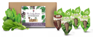 Leafy Greens SeedCell Kit Box with Seeds